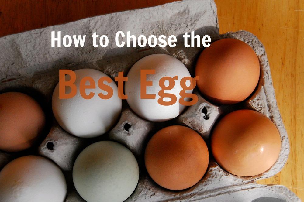 best eggs.jpg