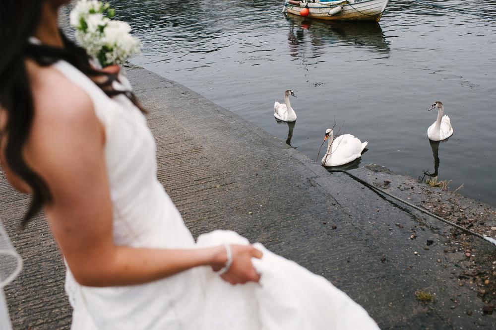 075 Bride and Swans.jpg