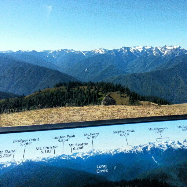Olympic Mountain Range from Hurricane Hill. (Taken with Instagram at Hurricane Ridge)