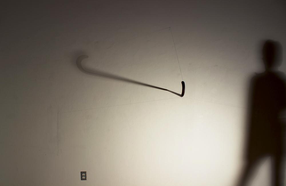 Walking Stick, 2013