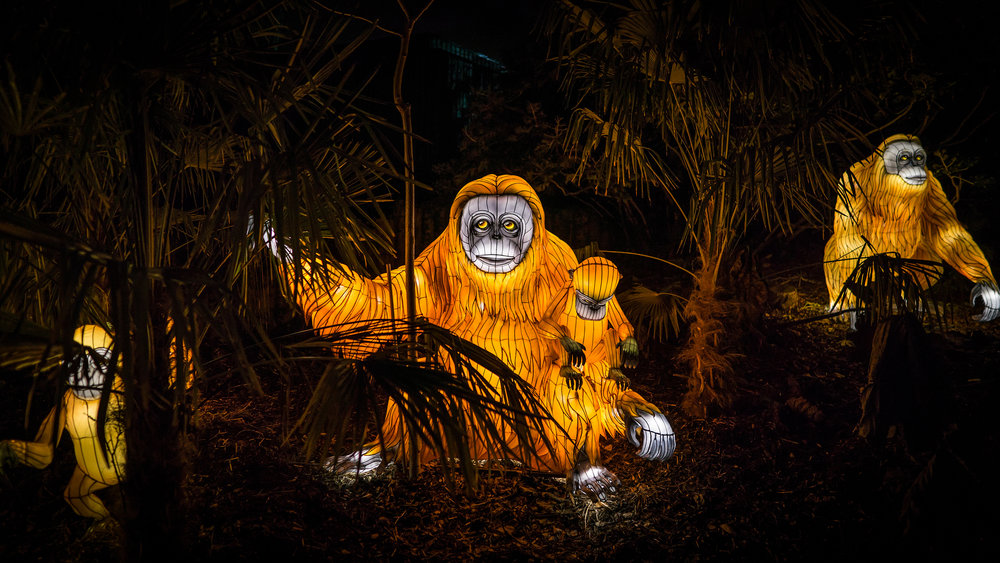 Orangutan Light sculptures
