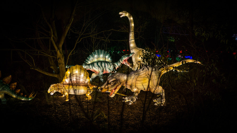 Light up Dinosaurs