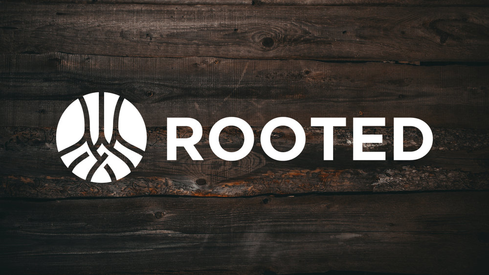 ROOTED // Sep 24 - Nov 12 2017