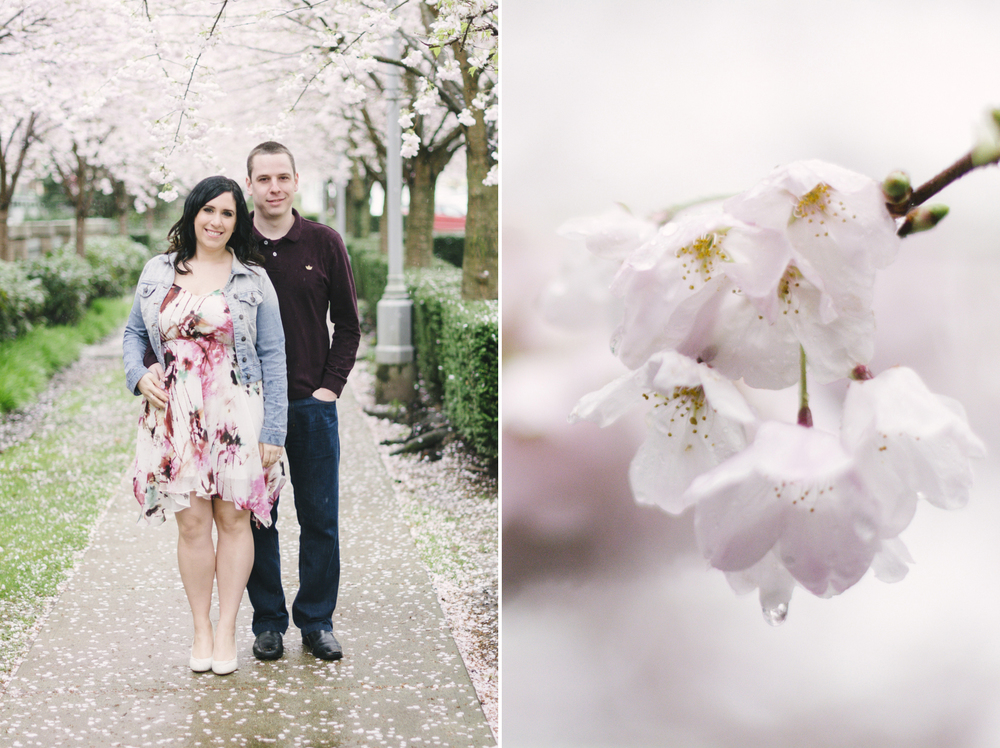 cherry-blossom-engagement-12.jpg