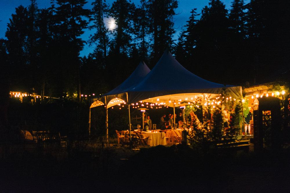 tofino-botanical-gardens-wedding-15.jpg