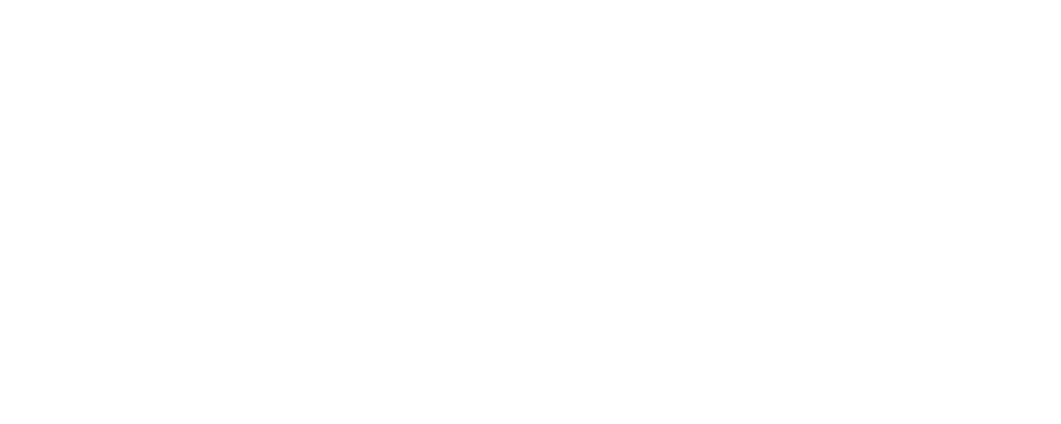 North Bay Silver Lab