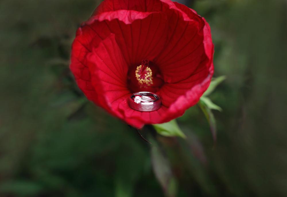 Ring&Flower_0740.jpg
