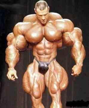 bodybuilder1_1106_l.jpg