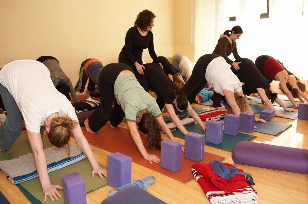 Prenatal Yoga Teacher Training Dhyana Yoga Arts