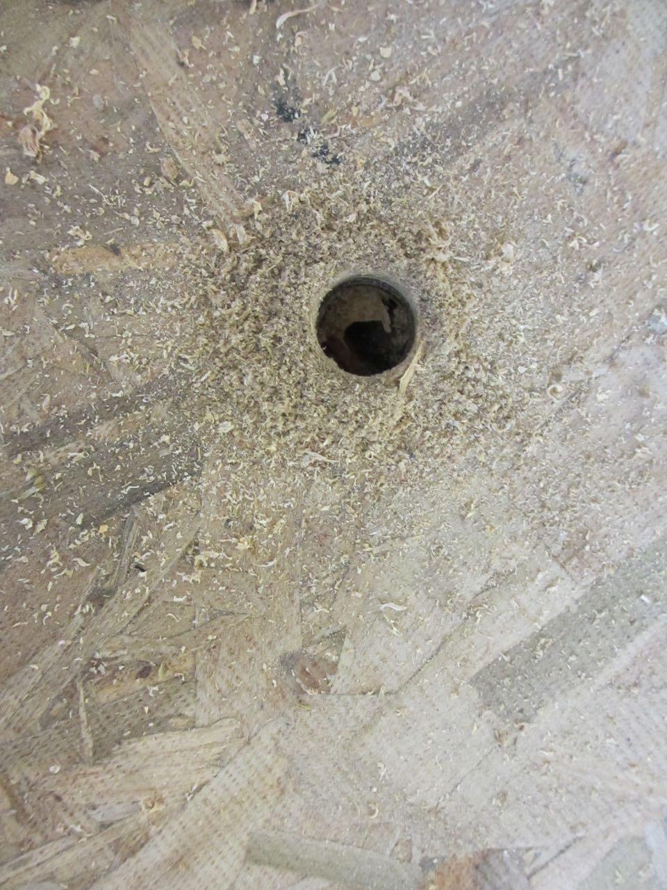Hole!
