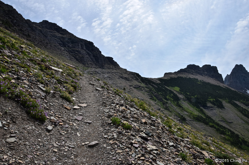 The spur trail leading to the glacier overlook.