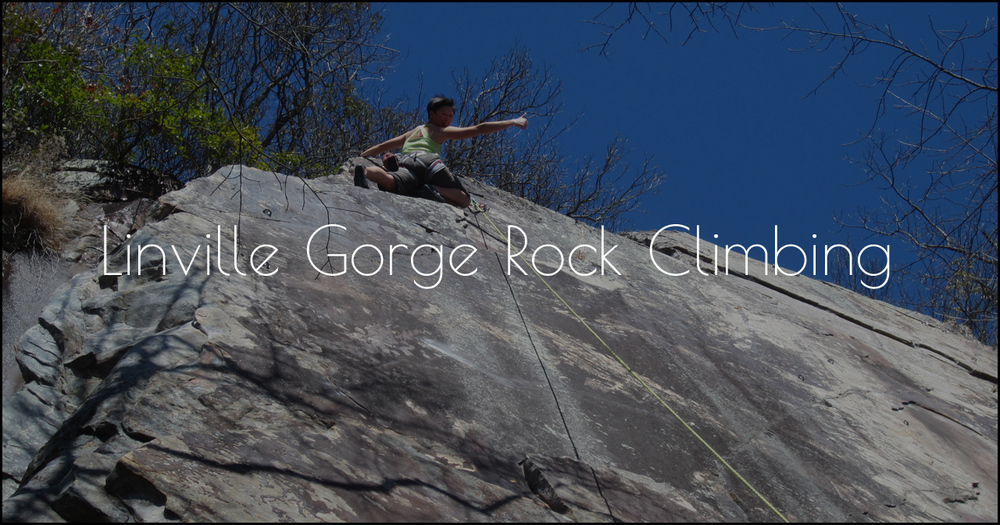 Linville Gorge IMG_6697.jpg