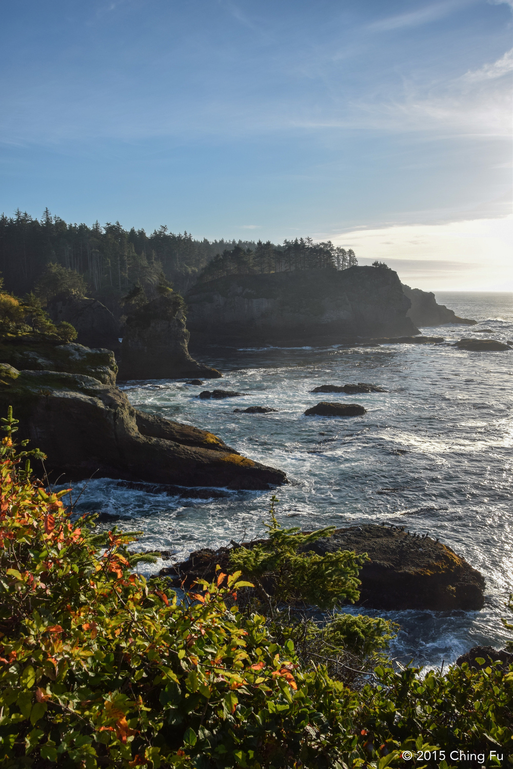 View of Cape Flattery.