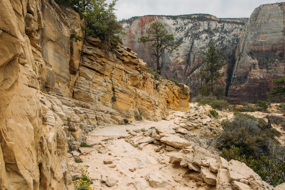 West Rim Trail