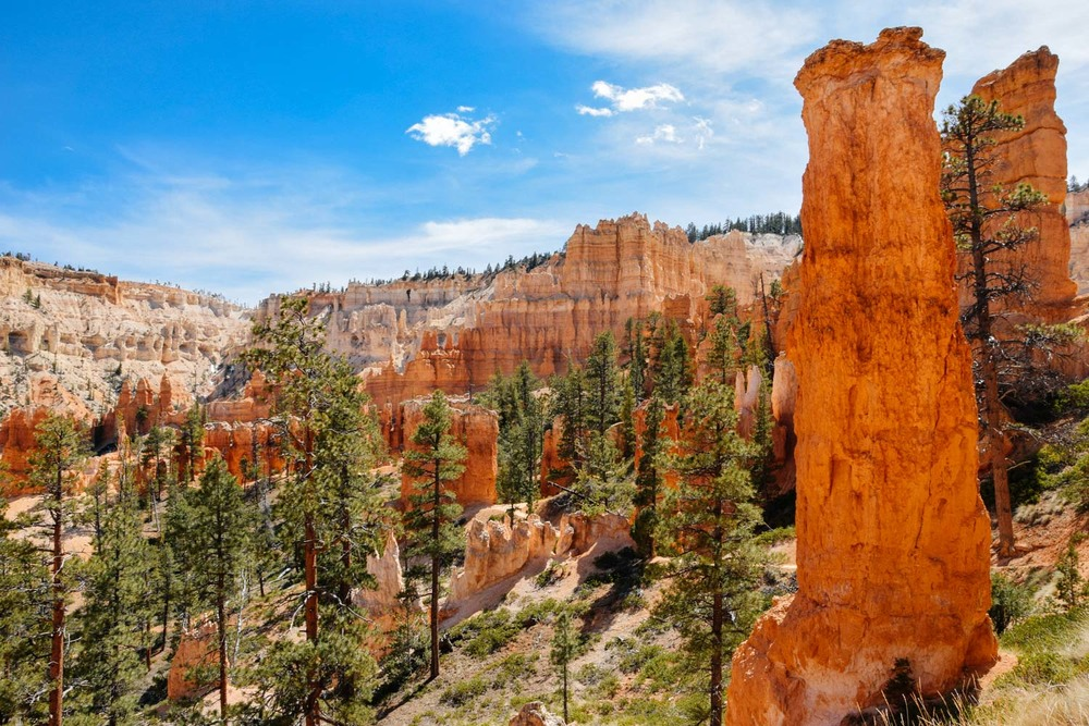 More hoodoos at Bryce Canyon National Park.