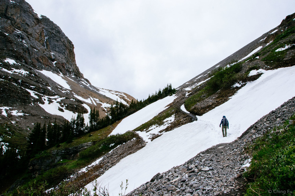 Hiking up to Harvey Pass.