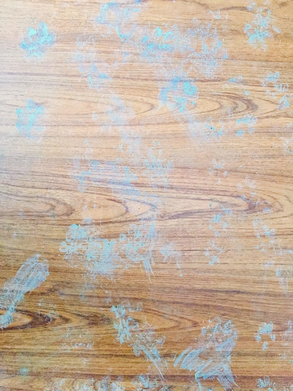 This is what our floors end up looking like when we were boondocked somewhere during the mud season. Didn't matter how hard we tried to wipe clean 8 feet.