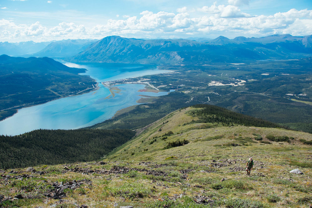 Nares Lake is in the foreground, Bennett Lake is in the background, and the small patch of brown towards the right of the photo is Carcross Desert.