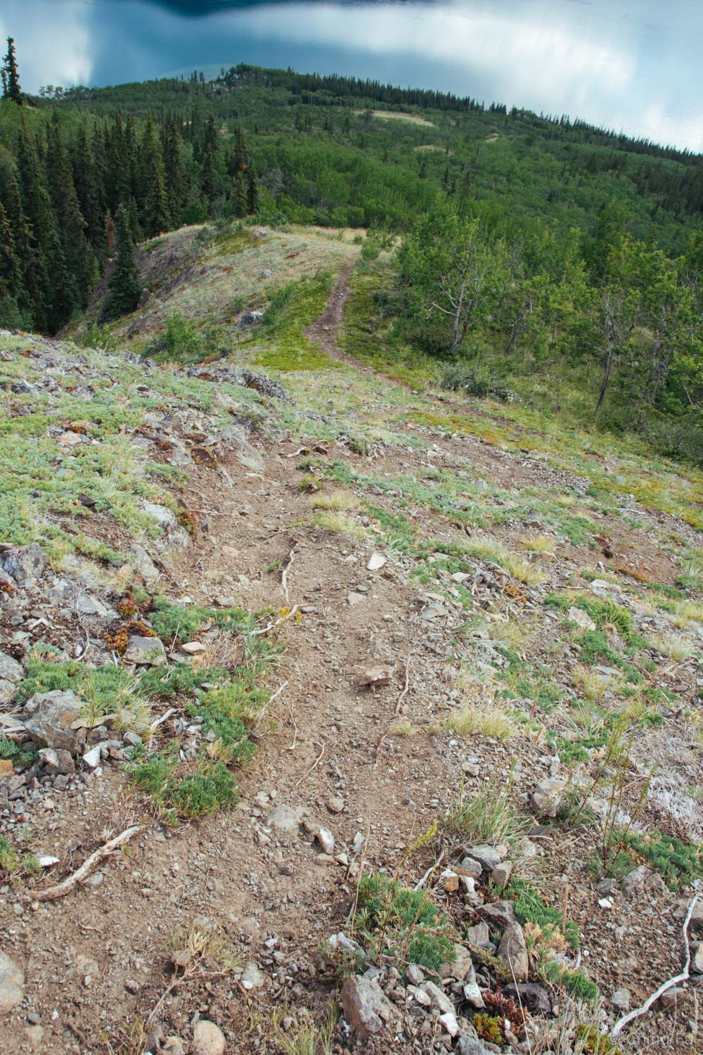 Nares Mountain trail.