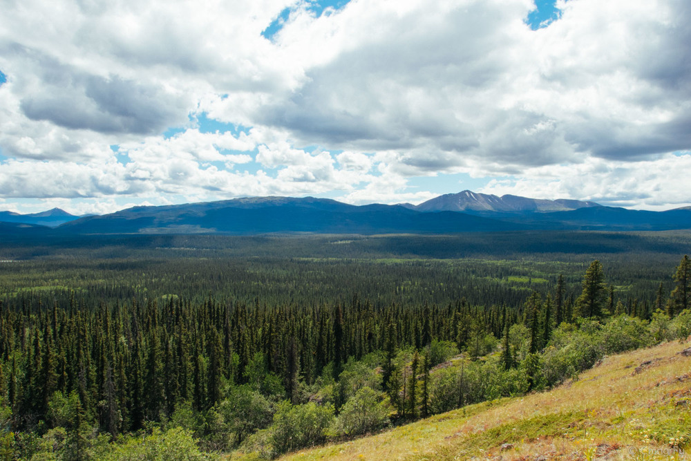 A lot of untouched land in Yukon.