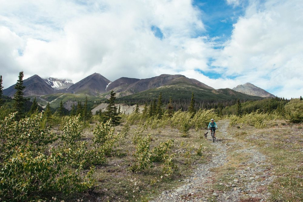 View of Alsek Valley on our ride.