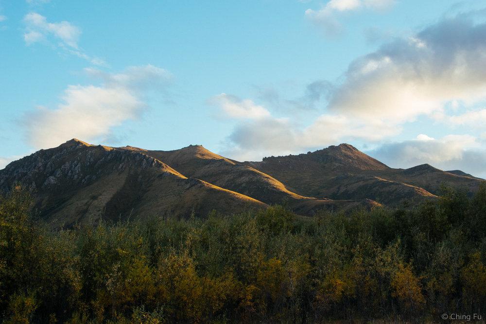 Surfbird Mountain, Tombstone Territorial Park