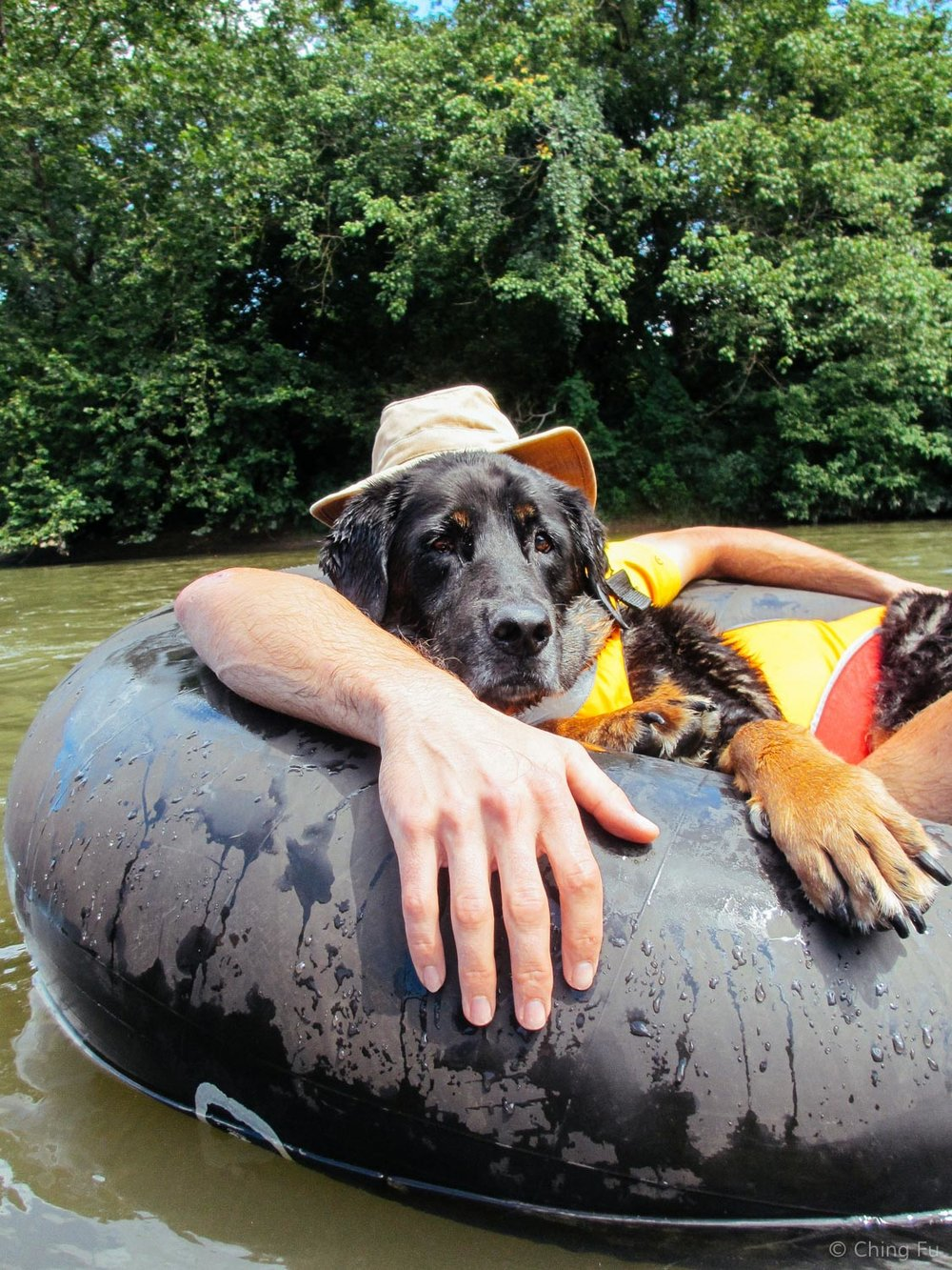 Tybee tubing on the French Broad River.