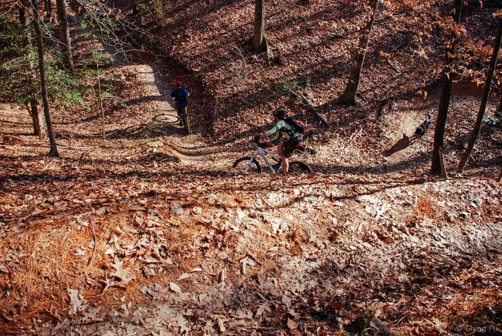 Tybee mountain biking with Jerud and Andrew.