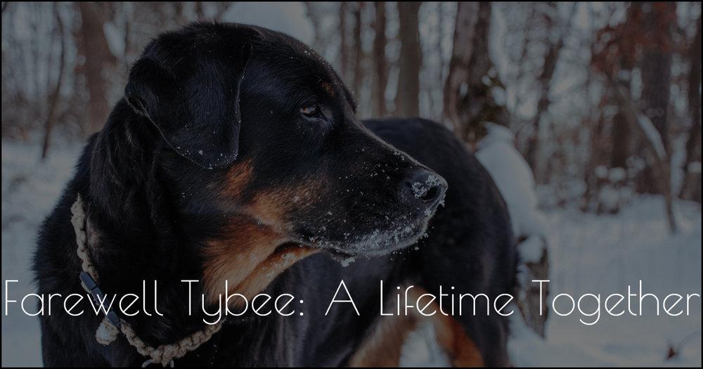 Farewell Tybee DSC_0081_463.jpg