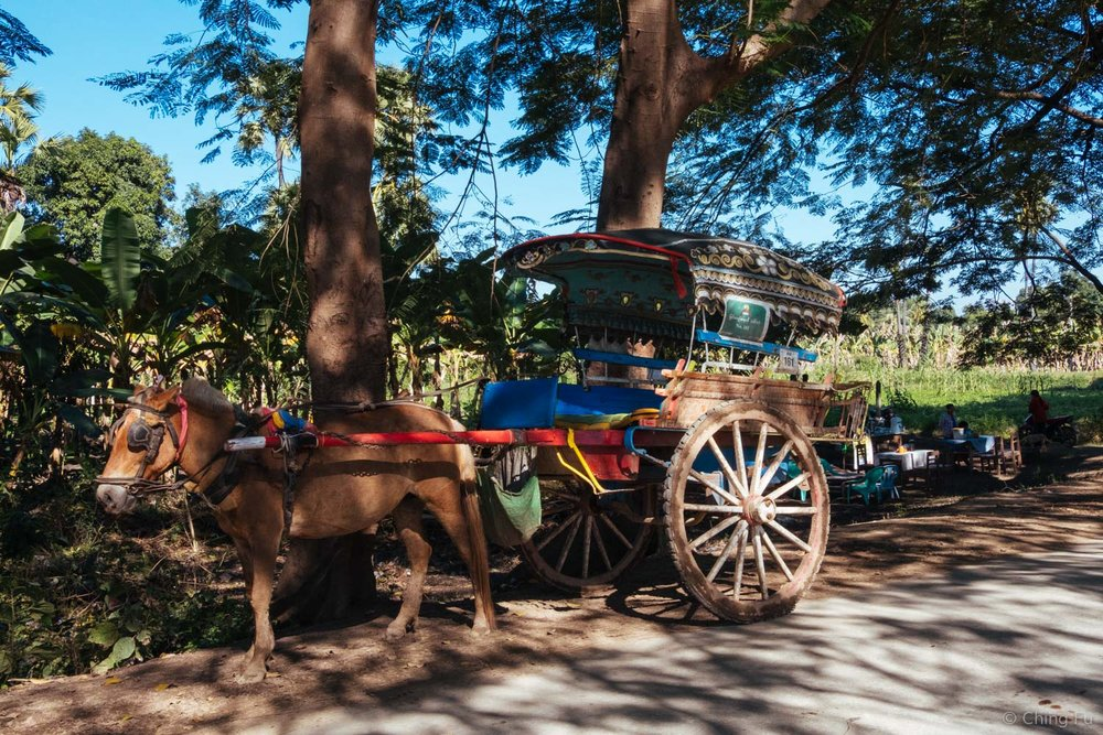 "A horse cart ""taxi"" in Inwa."