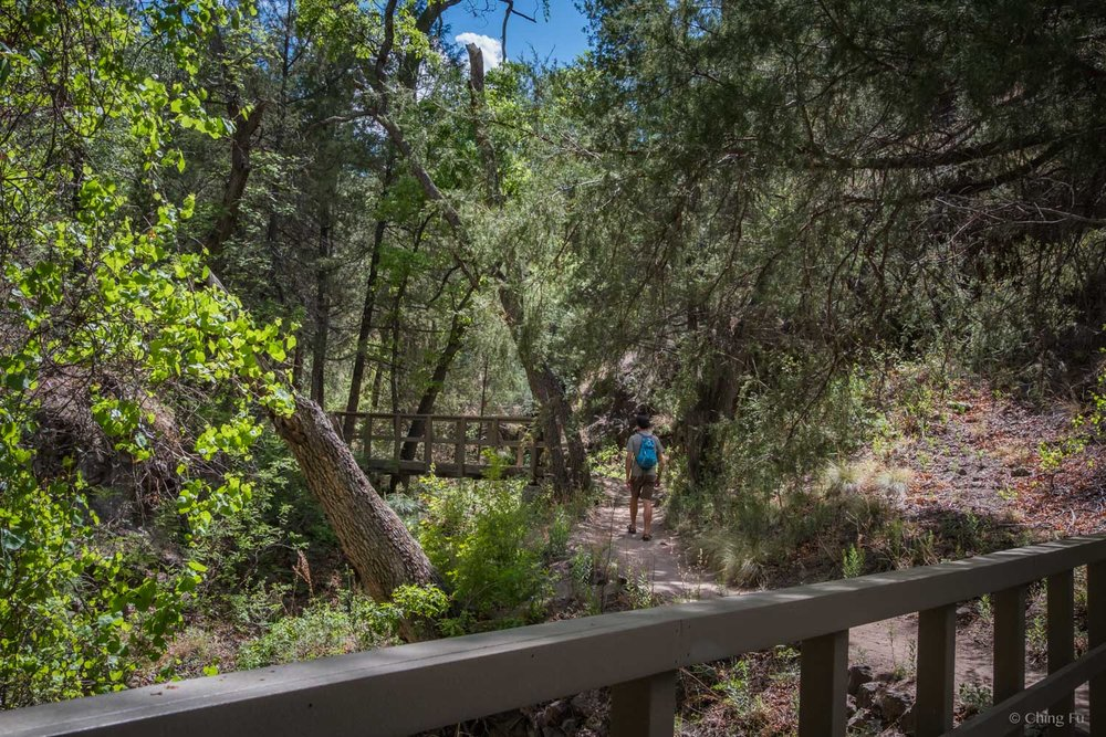 Trail to Gila Cliff Dwellings.