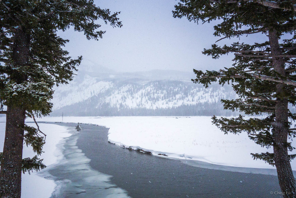 Madison River in Yellowstone National Park in the winter.
