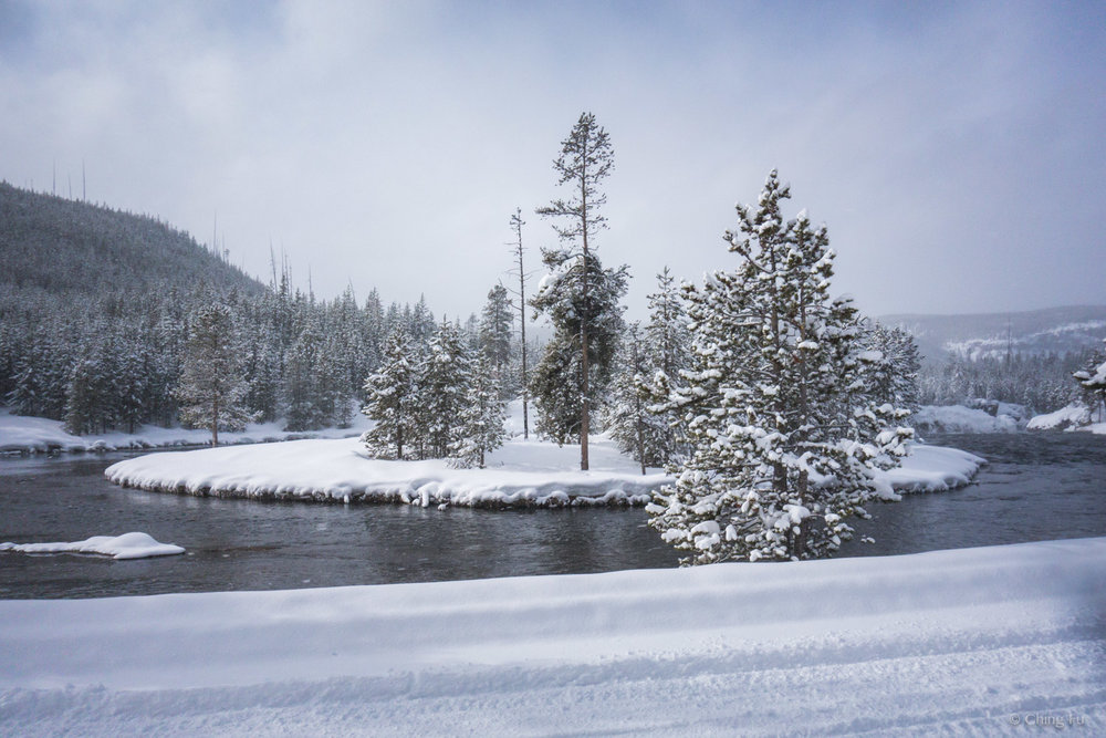 Views while driving the snowmobile at Yellowstone National Park.