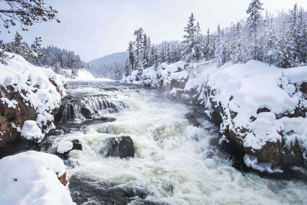 Winter in Yellowstone National Park.