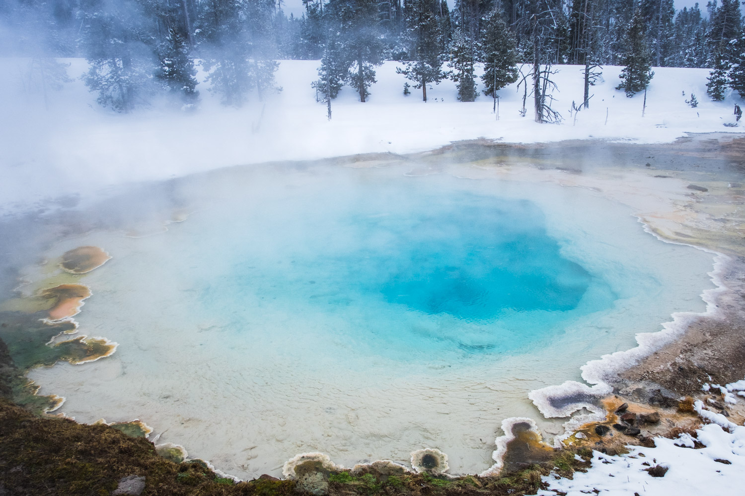Snowmobiling Yellowstone National Park Live Small Ride Free Sustainable Solar Powered Rv