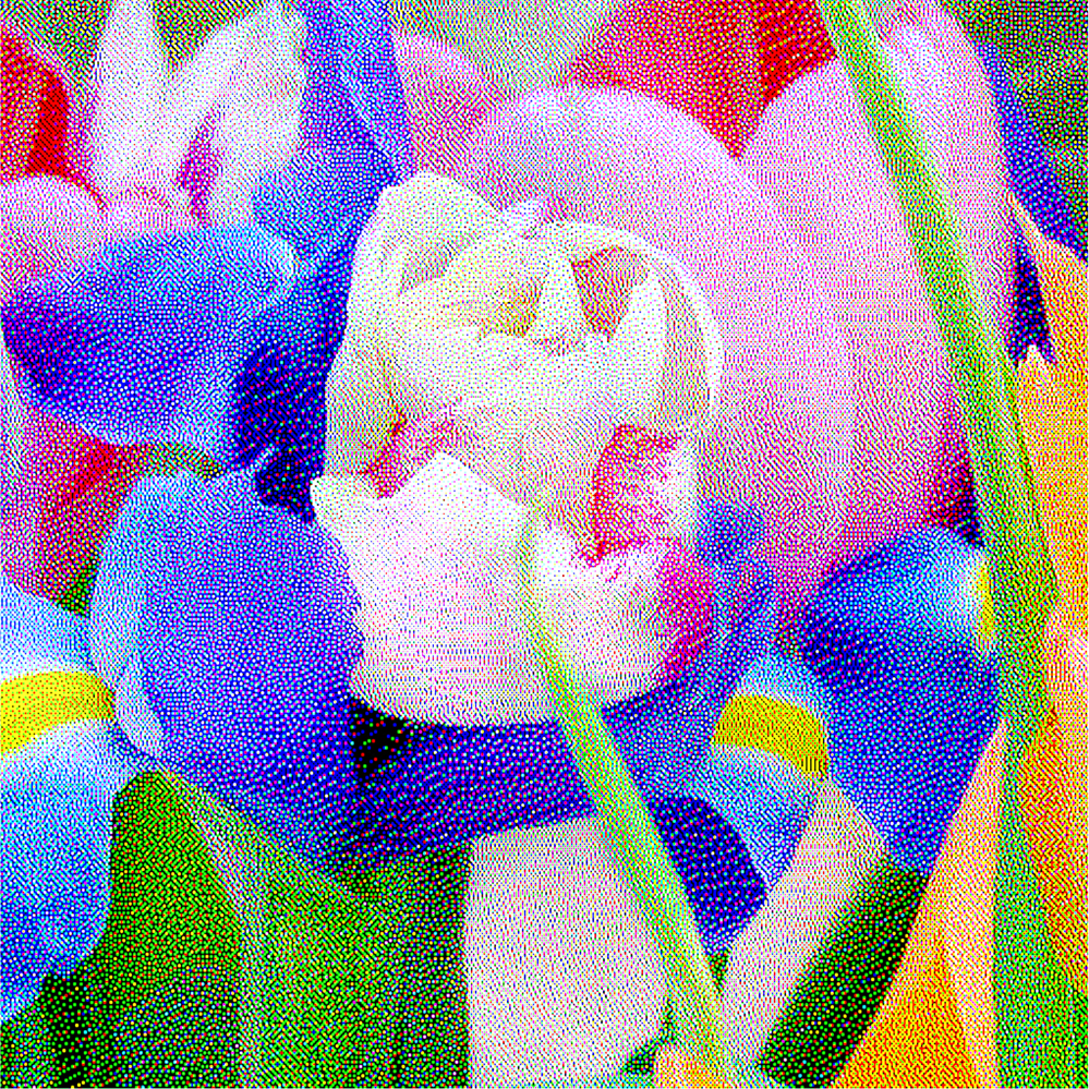 Blue Iris with Tulip