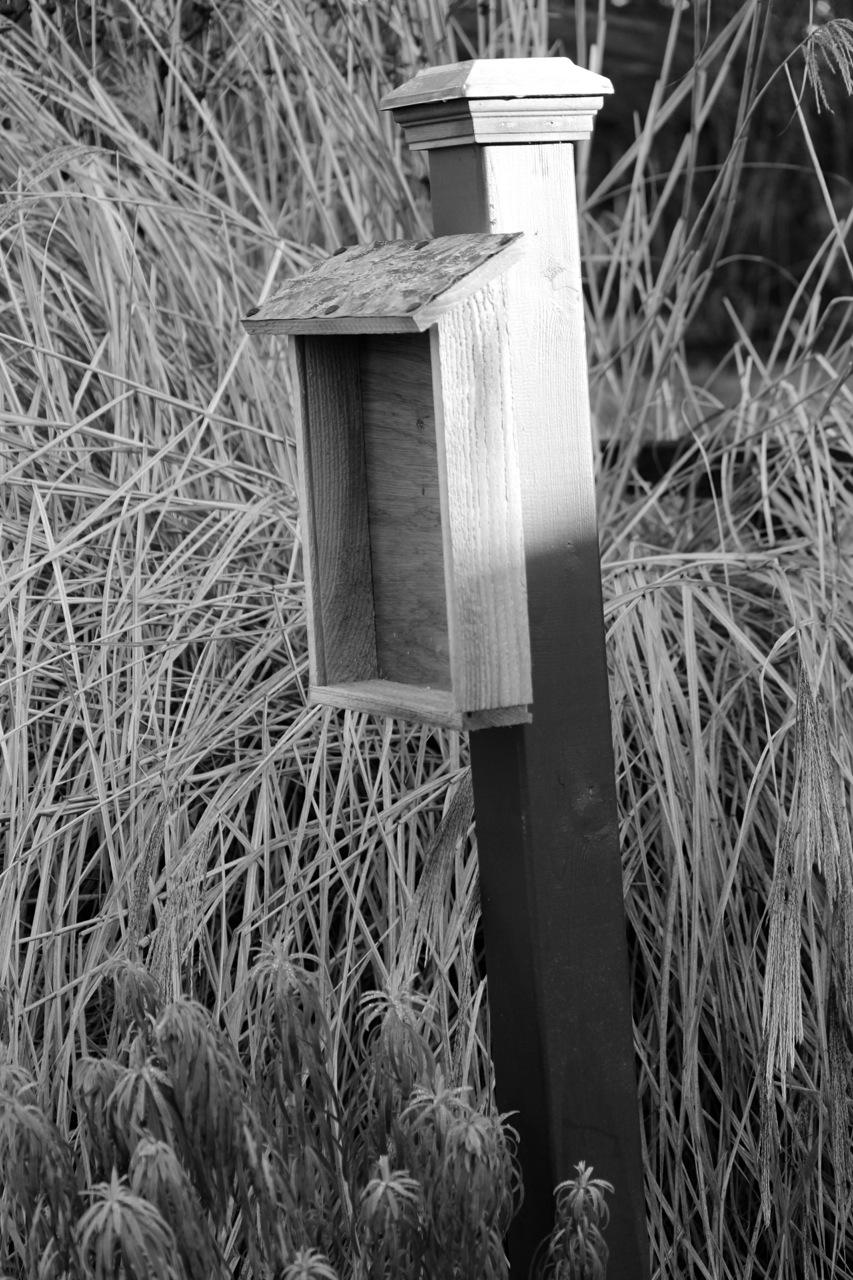 poetrypost.jpg