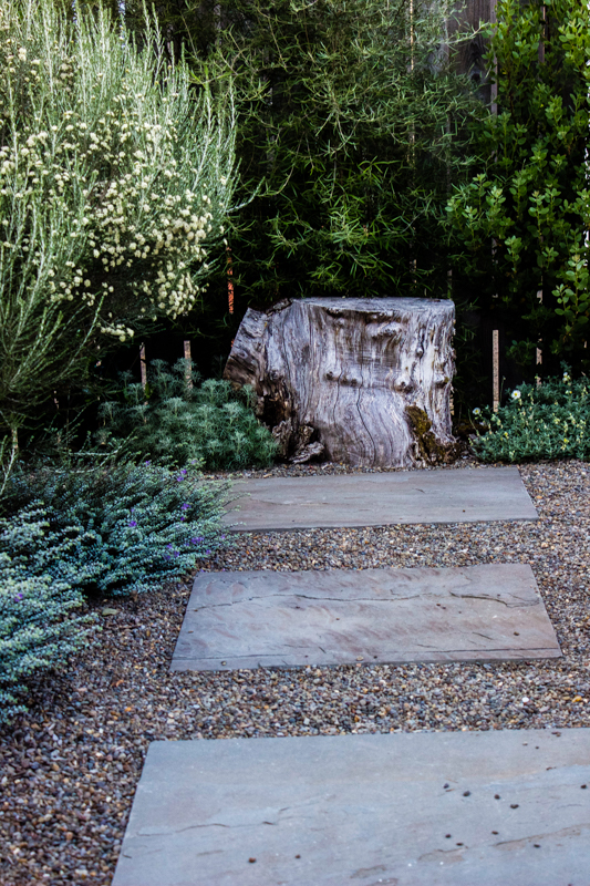 His back garden uses stumps to cap the gravel pathways studded with square cut bluestone. Simple and beautiful. Now let's take a closer look at some of the plants.