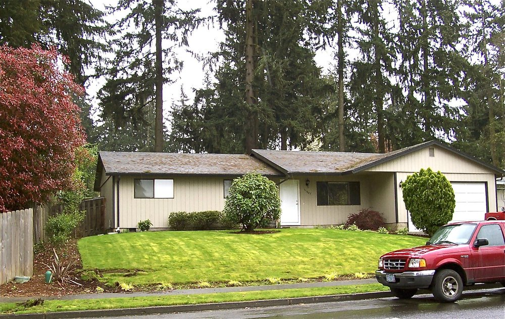 Let's take another look at that mossy lawn and tortured foundation plantings.