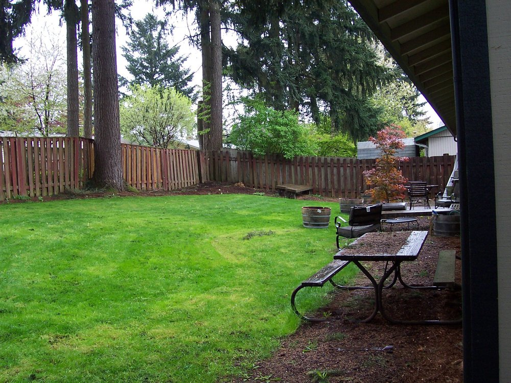 Just a backyard filled with lawn and edged with bark dust.
