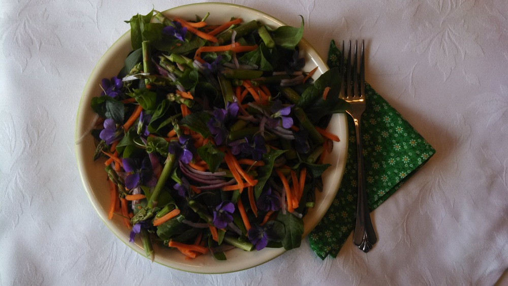 Camille's Spring Greens Salad with Violet Greens Recipe
