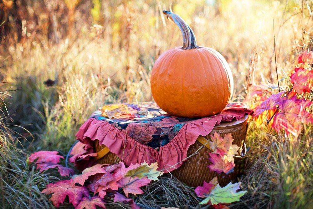 autumn-2900167_1920.jpg