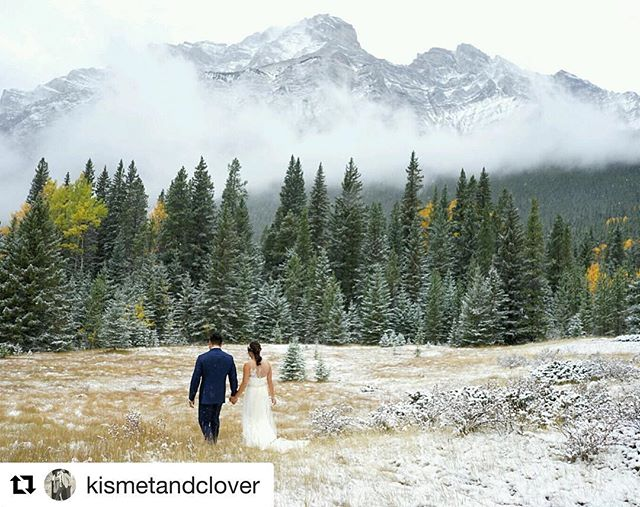 Remember 1 week ago! So happy to have been a part of this. Such a beautiful family and ceremony!!! #Repost @kismetandclover (@get_repost) ・・・ Despite winter making a guest appearance today, Rebecca & Jonah's wedding turned into a lovely romantic winter wonderland and we wouldn't have changed a thing. Mad love to the awesome team of vendors I got to work alongside today: @cameronmayphotography @glassstonecinema @bakemydayyyc @antheiafloralyyc @brittanyesther @beyond_the_decor_calgary @rsvpweddingsyyc . #mountainwedding #weddingday #firstlook #weddingplanner #yycbride #canmorewedding #canmore #winterwedding #elopement #thatsdarling #pursuepretty #yycweddingplanner #travelalberta #banff