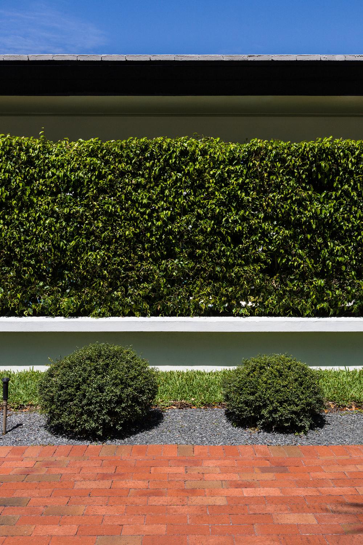 Hedges, Miami Shores Home
