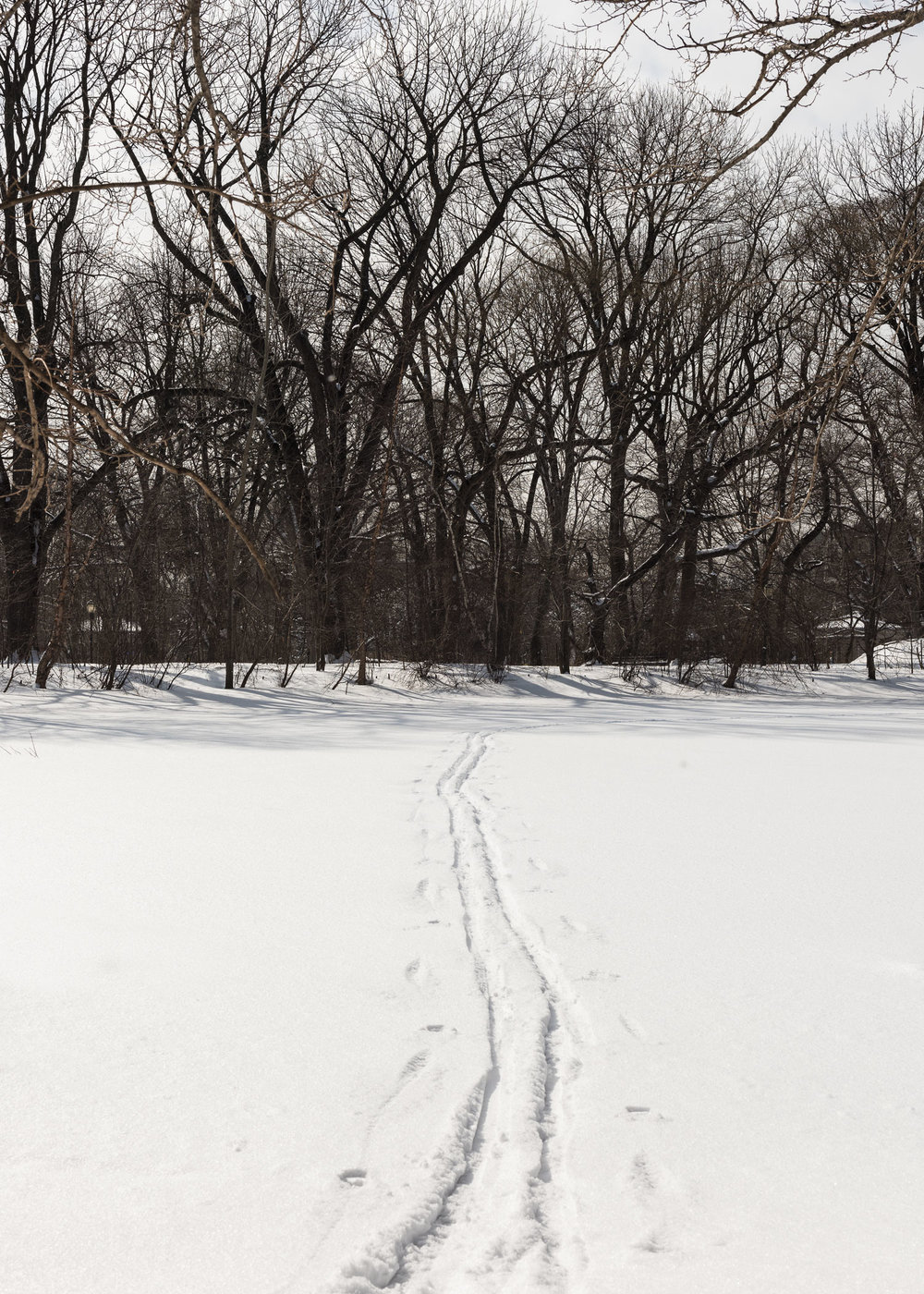 2015_he_BrooklynWinter_0290.jpg