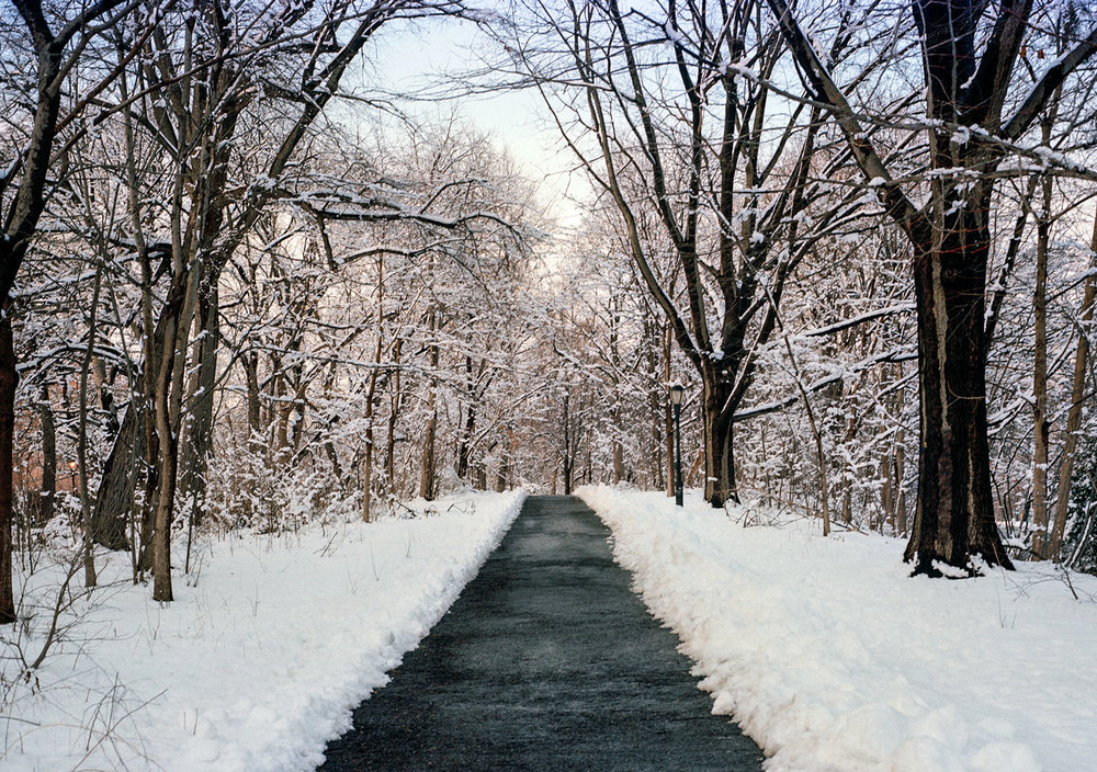 2014_he_winter_7_5-5x7.jpg