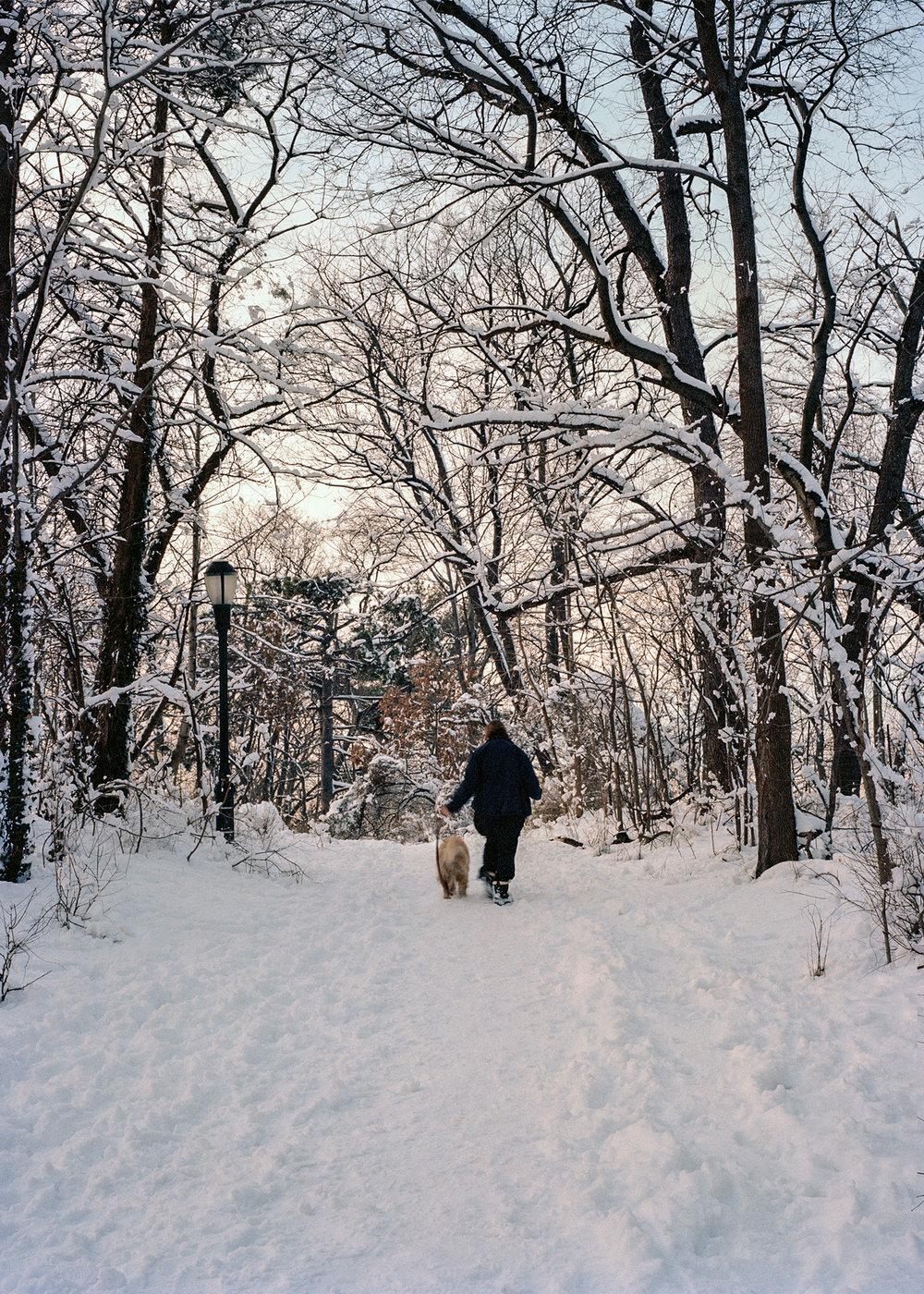 2014_he_winter_3_5-5x7.jpg