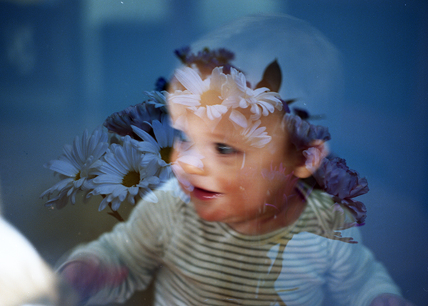 january 3, 2017 - double exposure, flowers from matthew & silence on the move