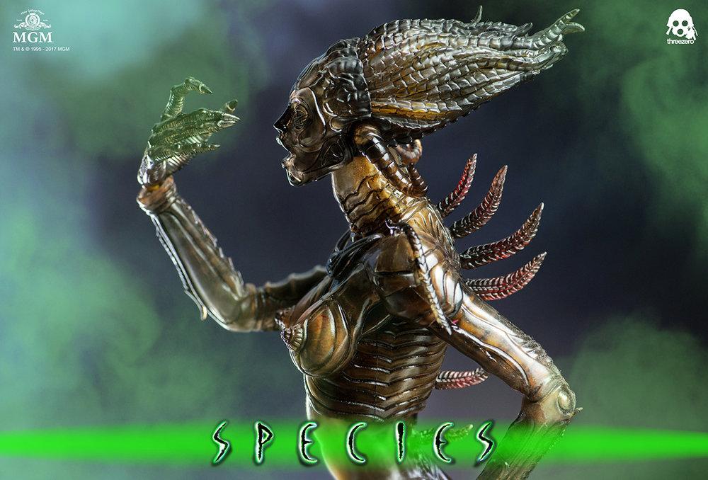 Species_6341.jpg