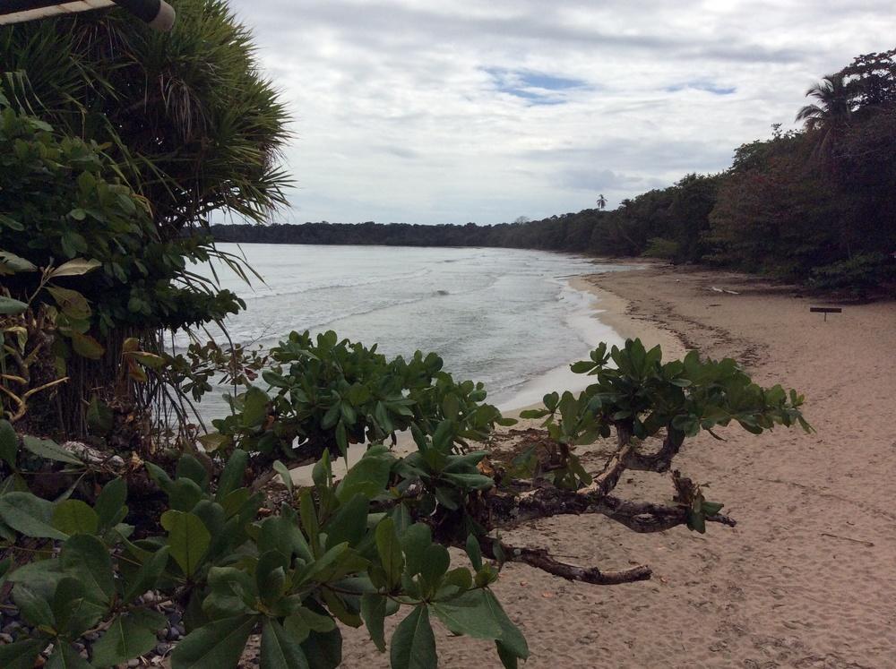 playa blanca de cahuita